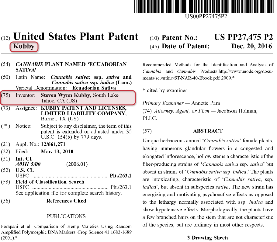 plant patent application