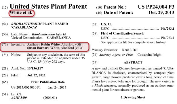 plant patent
