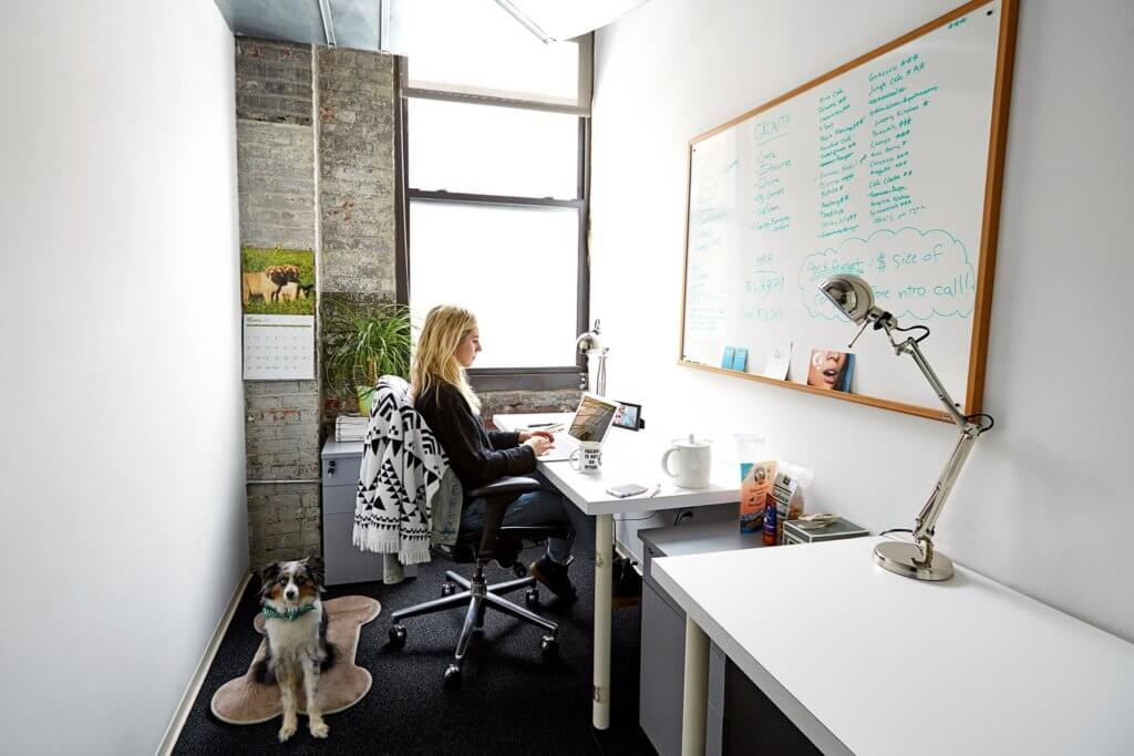 The-Yard-Bold-Patents-Complete-Brooklyn-Coworking-Spaces-List-Office-with-Dog