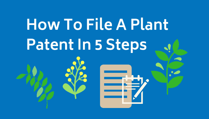 How to file a plant patent in 5 steps