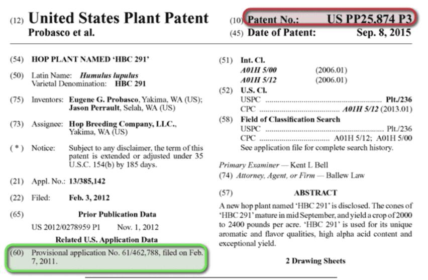 United States Plant Patent PP25,874
